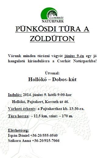 Punkosd_holloko