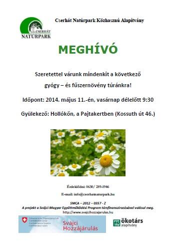 gyogynov_140511