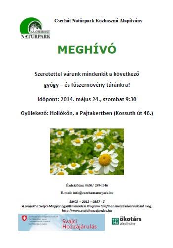gyogynov_140524